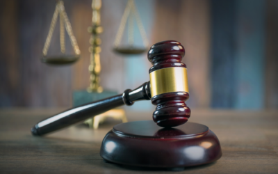 Bingür Sönmez Hakkında Suç Duyurusu Dilekçesi