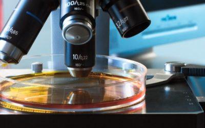 Aşılarda Kullanılan Maddeler / Aşı Etken Maddeleri
